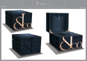 VAUDAUX : Client Jacobs & Co, Ecrin